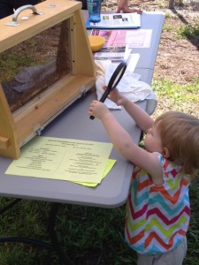 The club's observation hive and bees were a big hit with young and old alike.
